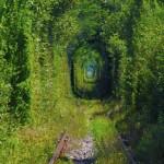 Tunelul iubirii de la Obreja, Caraş-Severin