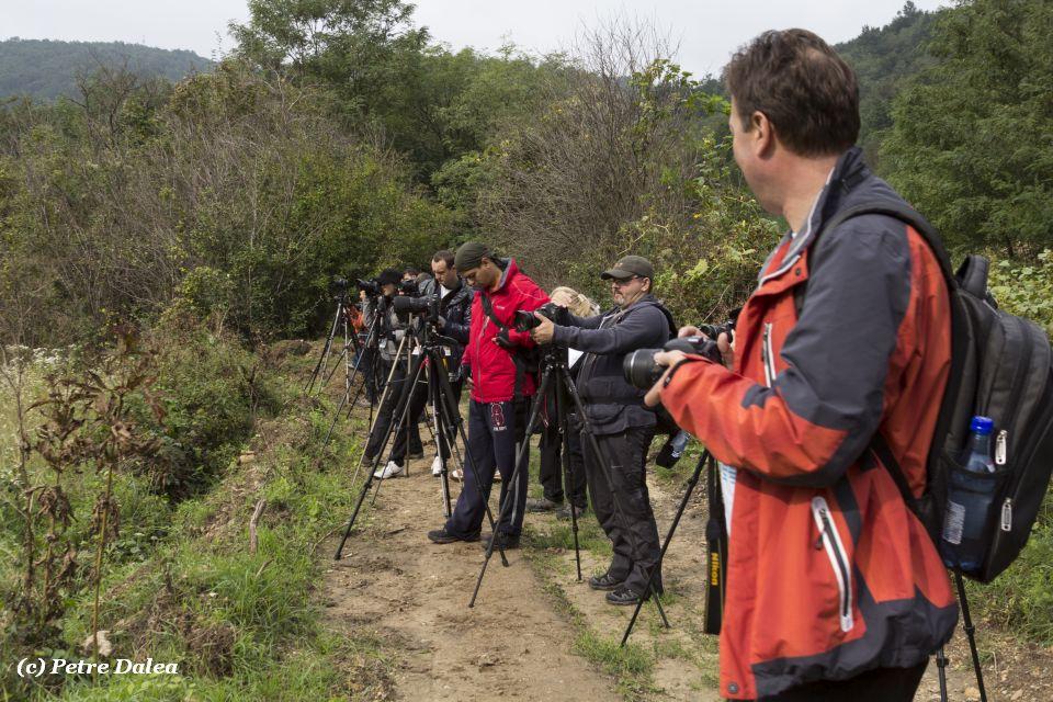 weekend cu workshop foto in Cheile Nerei