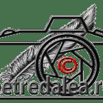 Watermark sau Logo, sau şi una şi alta …