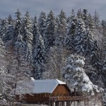 Cabana si Lacul Buhui iarna
