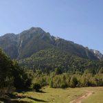 Asociația Drumeții Montane – planuri pentru un viitor verde