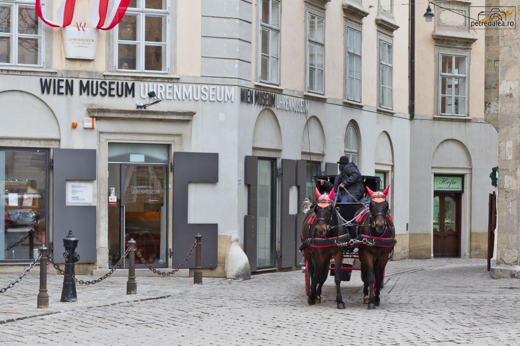 Muzeul ceasului Viena