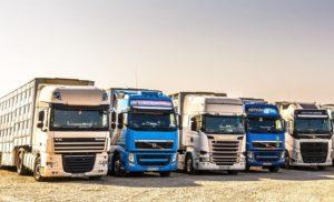 Transport profesionist de animale oferit de Livestocktransport.ro